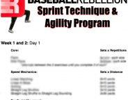 Sprint Technique and Agility Program Speed Training
