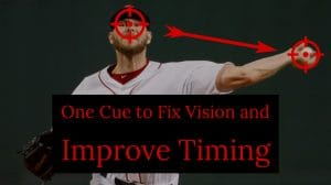 One Cue to Fix Vision and Improve Timing