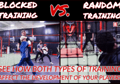 Blocked Training vs. Random Training (2)